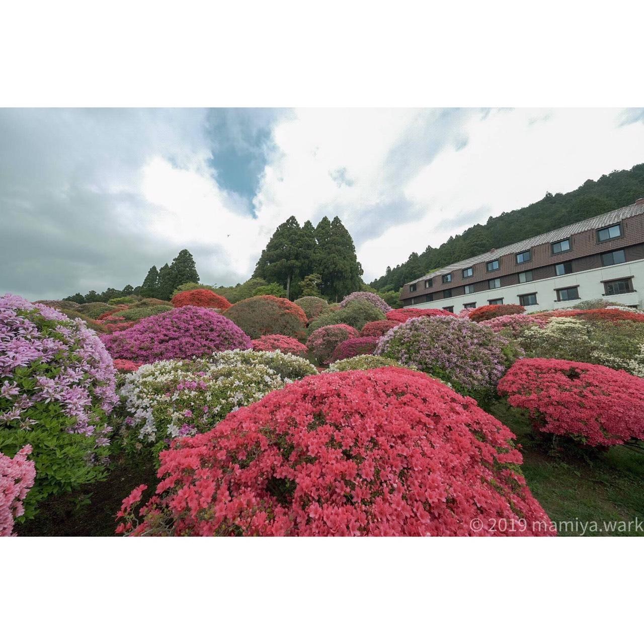 山のホテル1