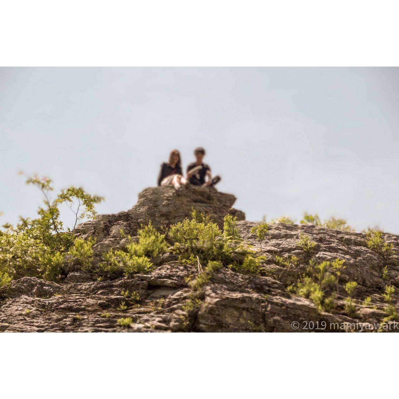猿山のカップル?