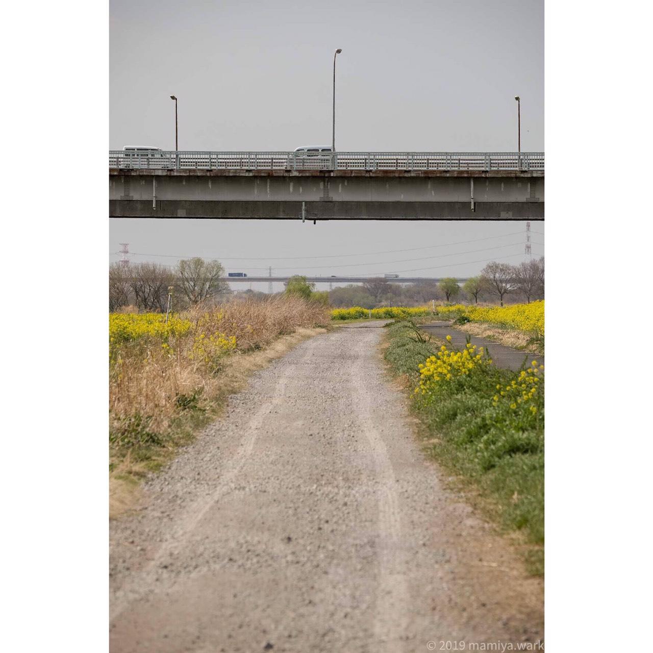 境大橋下から