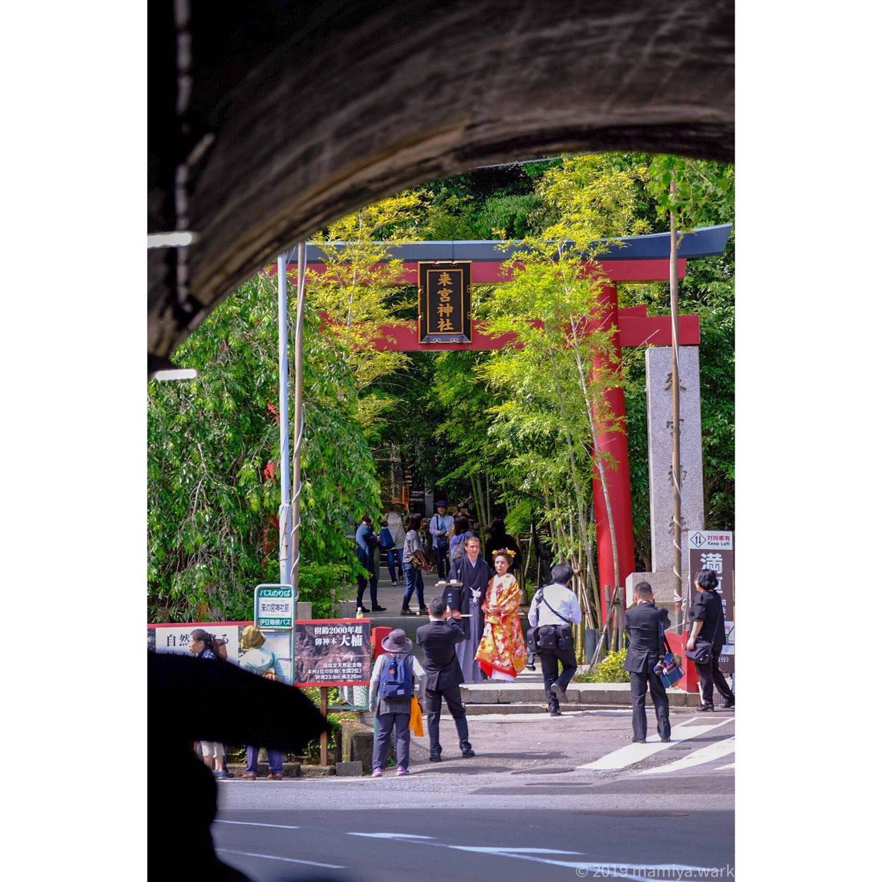 トンネルから来宮神社へ