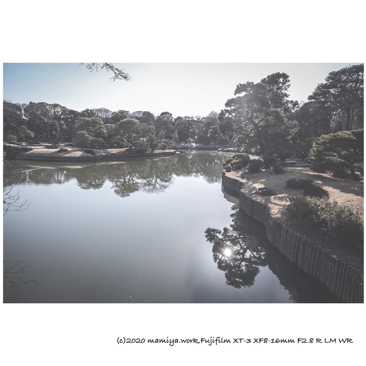 六義園池に太陽のリフレクション